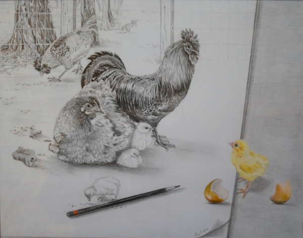 Liz Butcher 3D drawing of chickens coming to life off the page