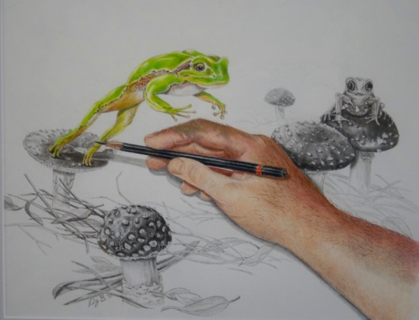 Liz Butcher 3D pencil drawing of leaping frog