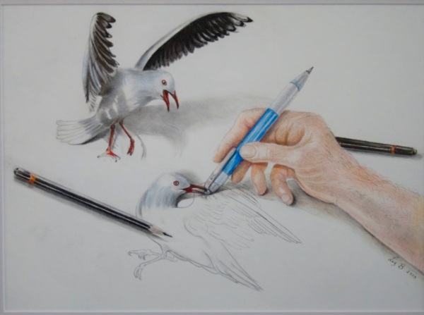 Liz Butcher 3D pencil drawing of seagull coming to life